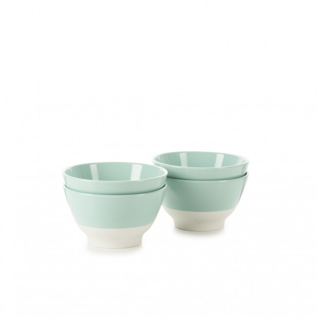 Set of 4 Color Lab breakfast bowls 4 colors